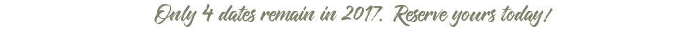 David McCandless Photography logo